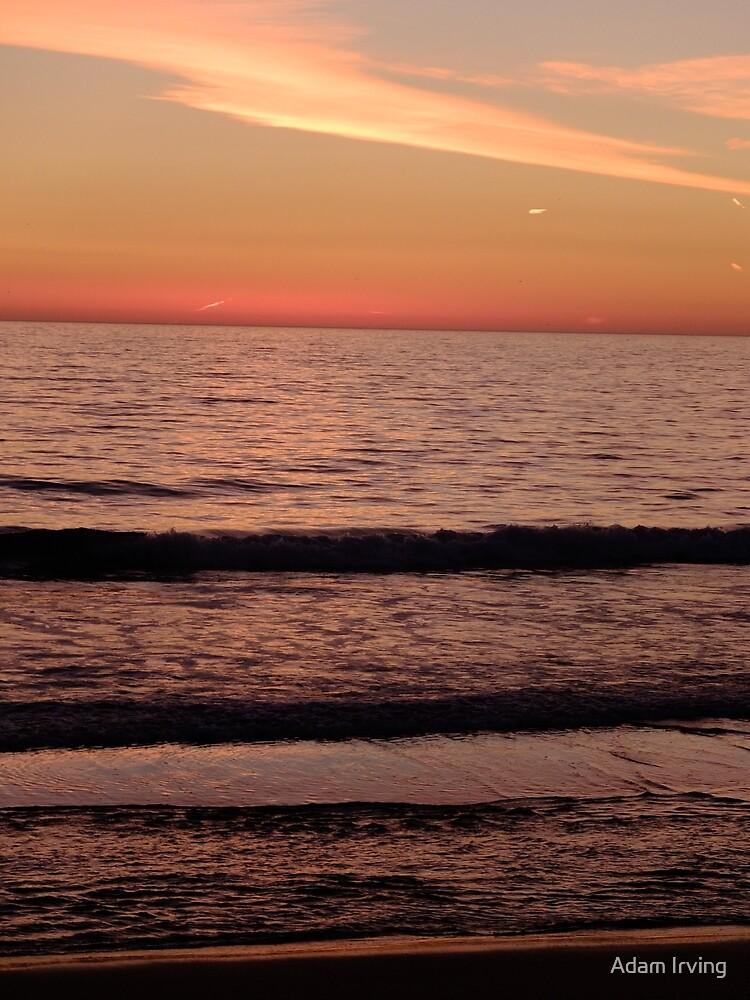 Venice Beach Sunset  by Adam Irving