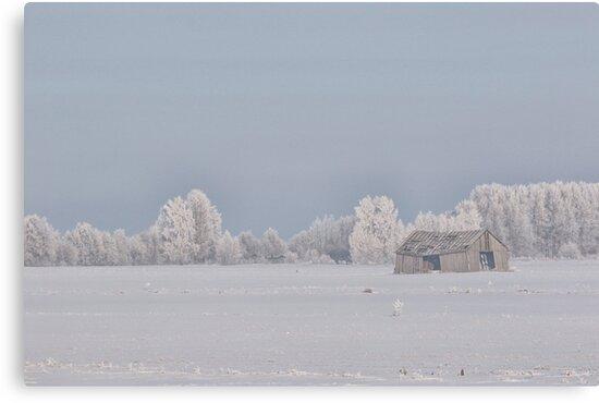 Old barn in Frozen landscape by Petri Naukkarinen