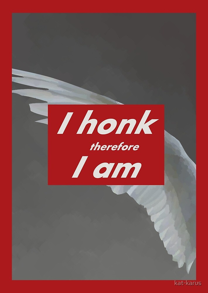 Untitled (I Honk Therefore I am) by kat-karus