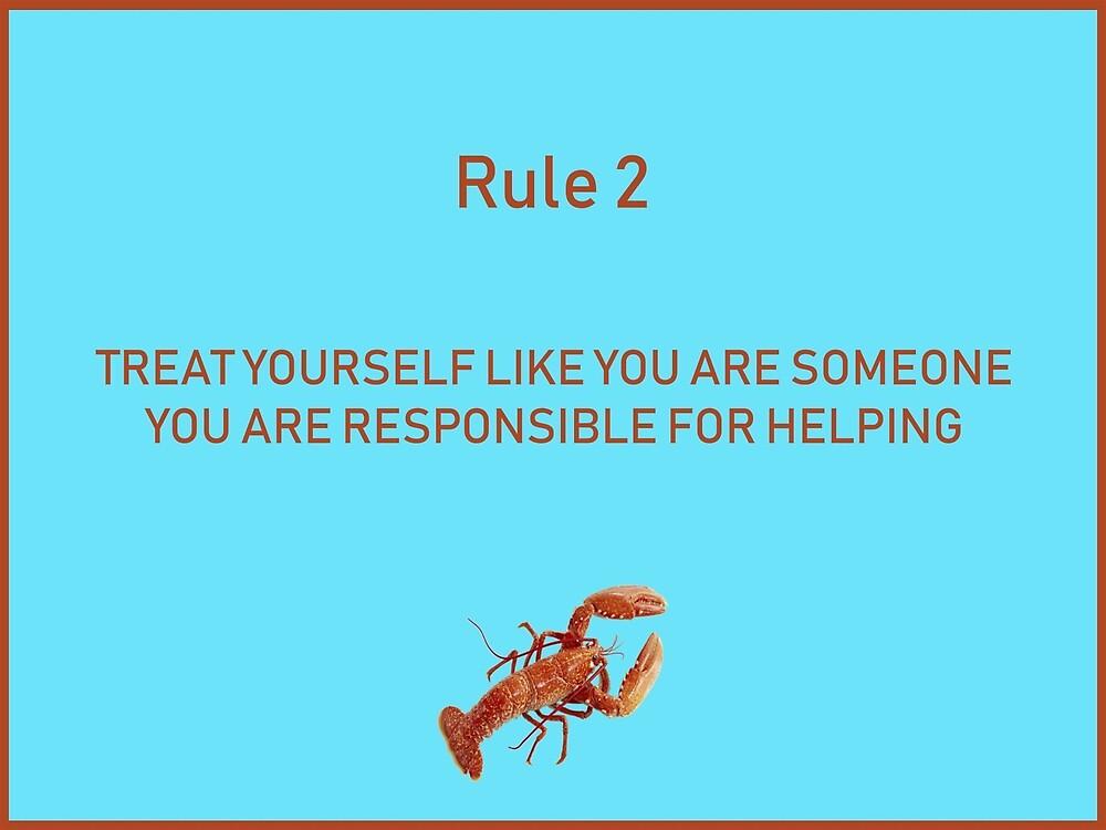 Jordan B Peterson 12 rules for life rule 2 by malikheadley
