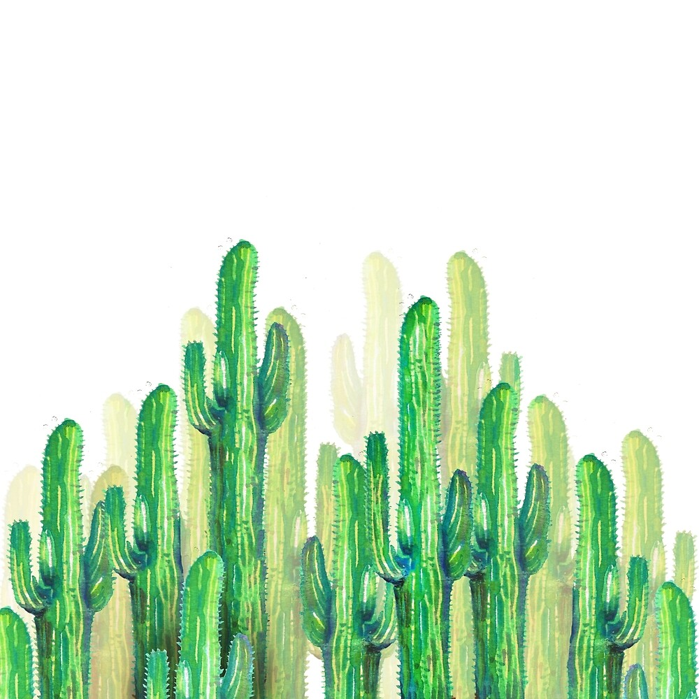 Green cactus by franciscomff