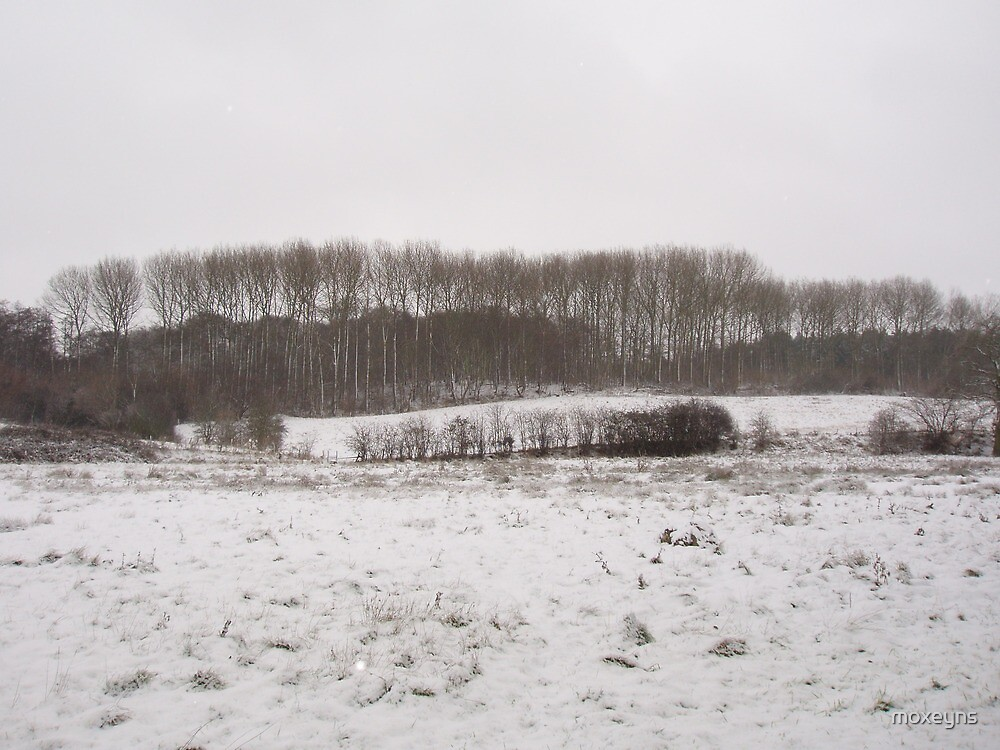 Hill and wood in snow by moxeyns