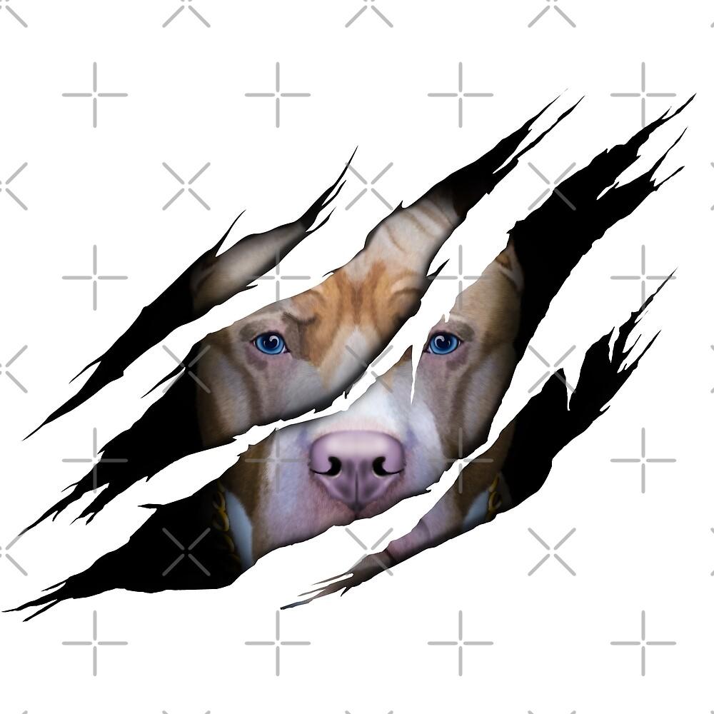 Pit Bull, Pit Bull 3D, 3D effect, Pit Bull Claws Shredded, Pit Bull Torn effect by RomanDigitalArt