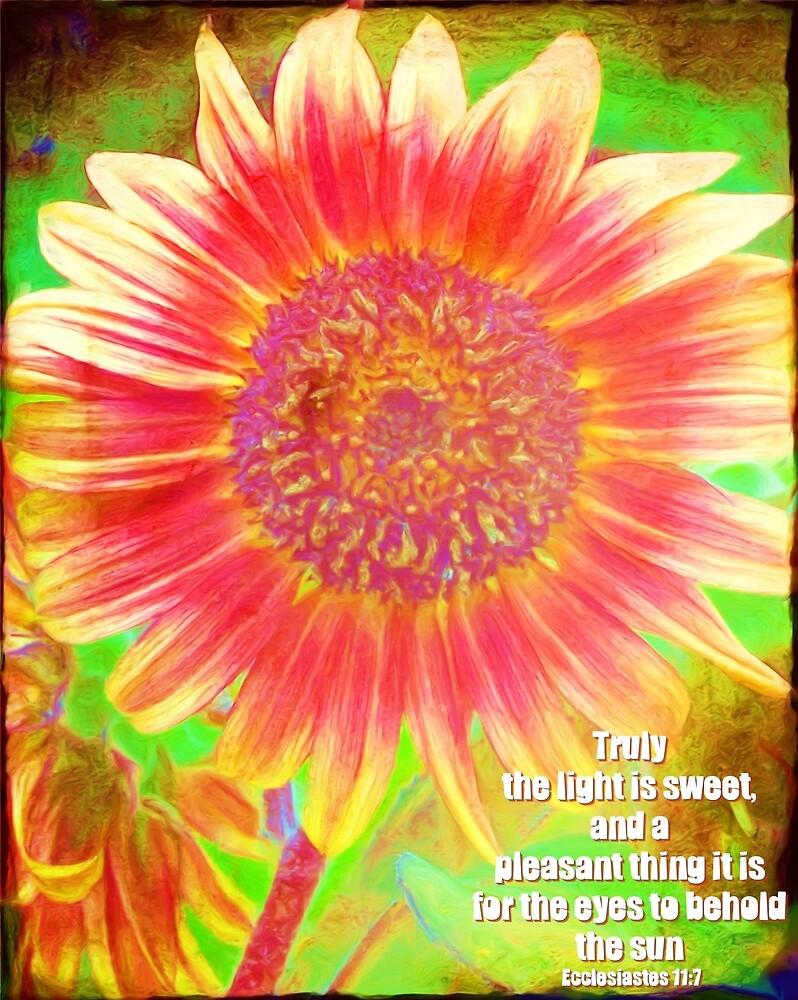 Ecclesiastes 11:7 by romans12designs