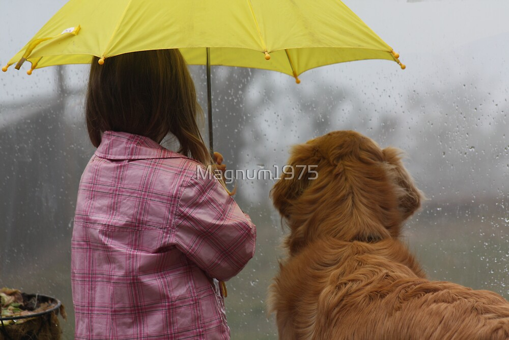 Sharing the Umbrella 2 by Magnum1975