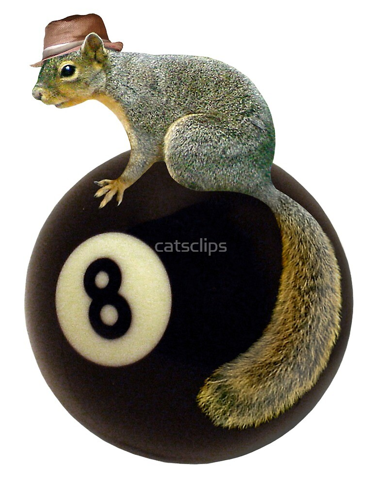 Squirrel on the 8 Ball by catsclips