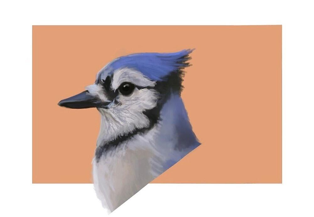 Blue Jay by ivoxus