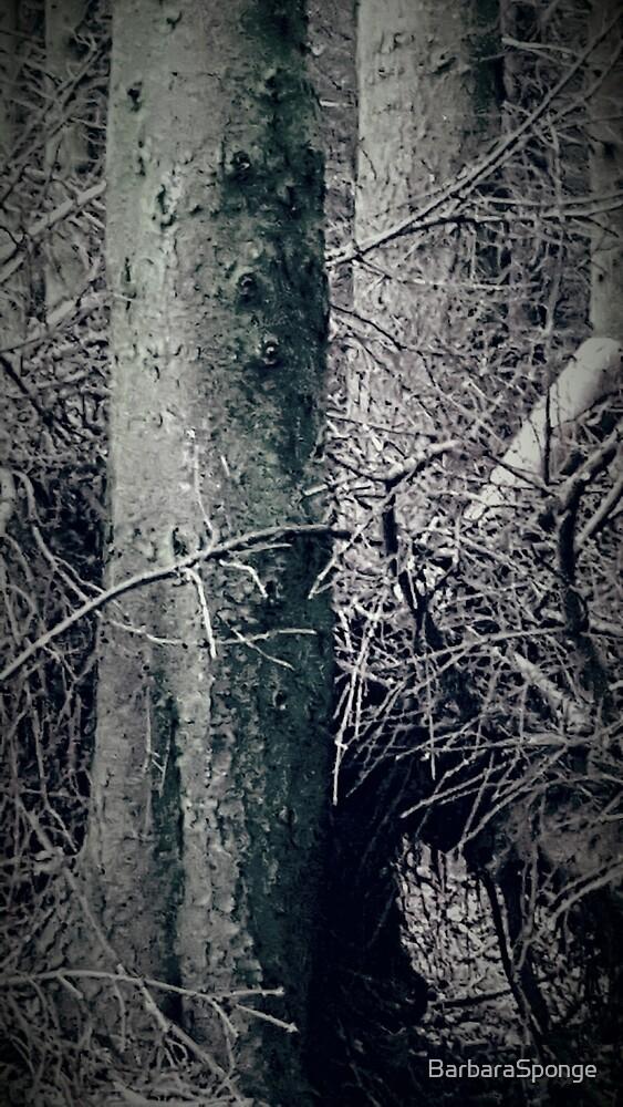 Gothic Forest by BarbaraSponge