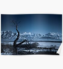 Winter Desolation Poster