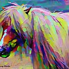 Painted Pony by Bunny Clarke