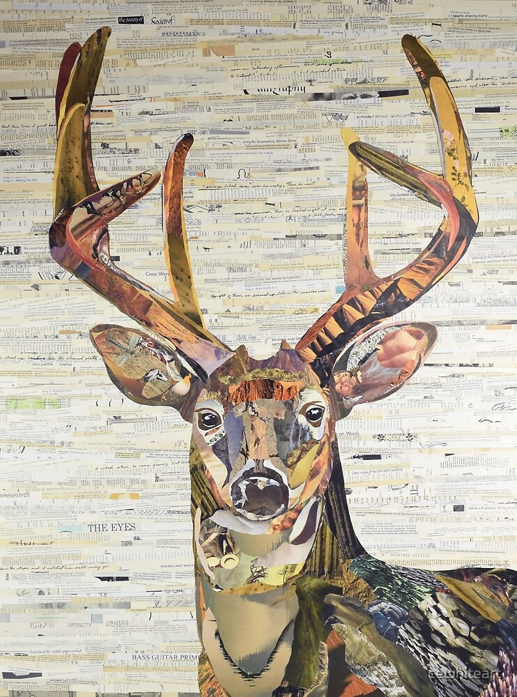 Whitetail Deer or Buck Collage Art by C.E. White by cewhiteart