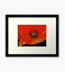 Blissful Bloom Framed Print