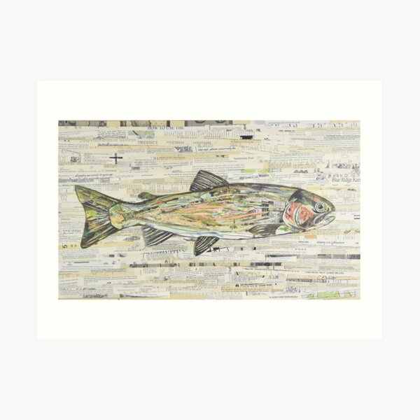 Rainbow Trout Collage by C.E. White  Art Print