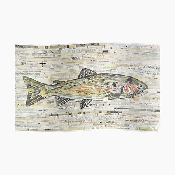 Rainbow Trout Collage by C.E. White  Poster