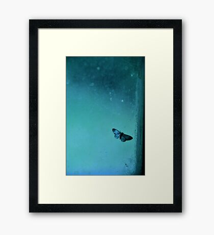 Butterfly II Framed Print