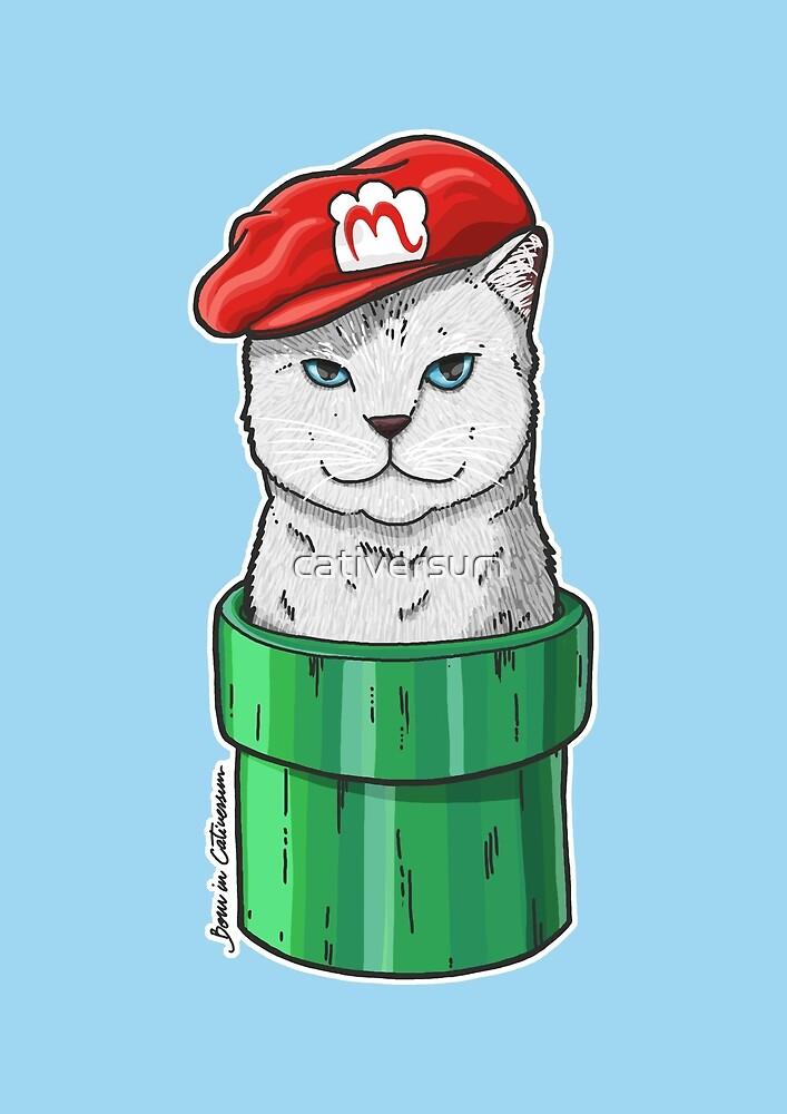 Meow Bro 1 by cativersum