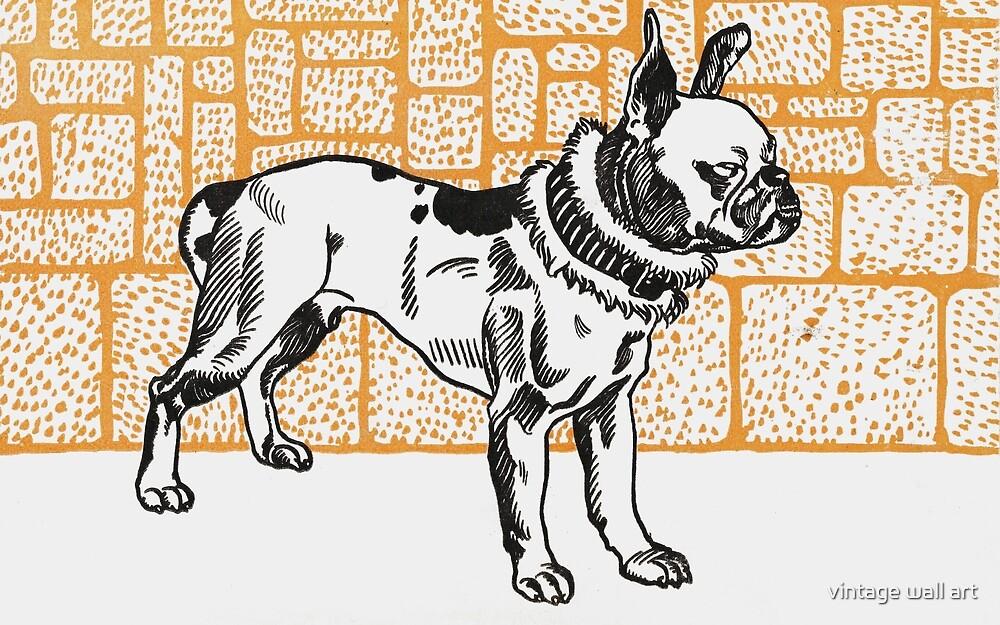Pitbull Terrier in Orange by fineearth
