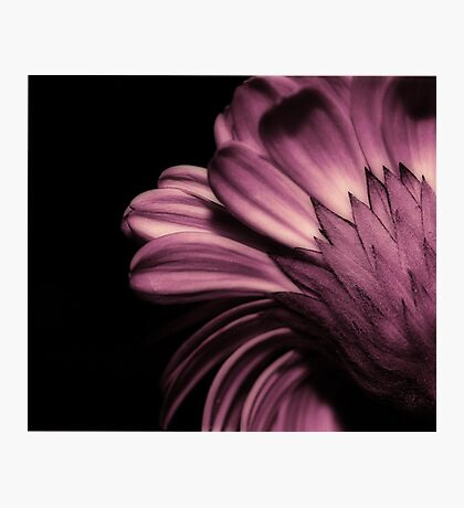 beauty from behind Photographic Print