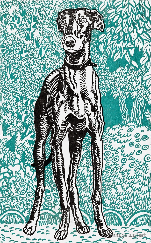 Greyhound by Moriz Jung, 1912  by fineearth