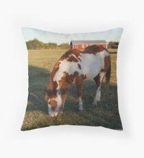 Quarterhorse Throw Pillow