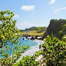 Hamoa Beach Through the Trees by Angelina Hills