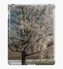 Winter Scene - Frosted Tree iPad Case/Skin