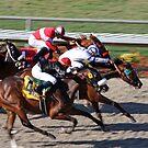 The Race by CarolM