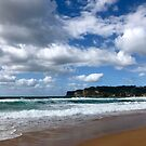Avoca Beach, NSW Australia  by Of Land & Ocean - Samantha Goode