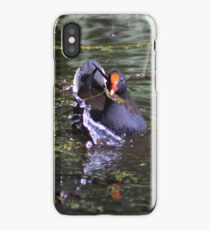 Great North walk - Lane Cove National Park (short section) iPhone Case/Skin