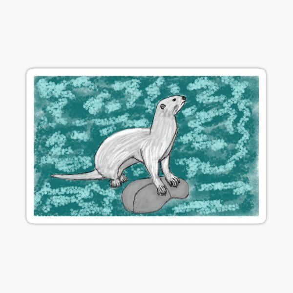 Young otter bathing in the river Sticker