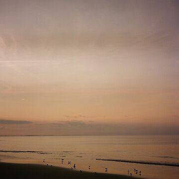Coffin's Sundown by TBM77