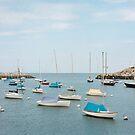 Rockport Harbor by Tim Mannle