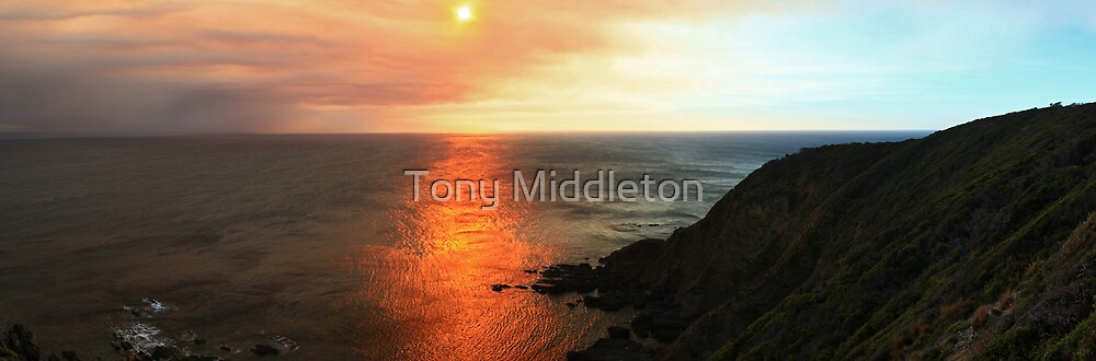shimmering... by Tony Middleton