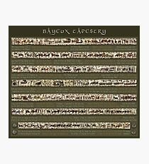 Bayeux Tapestry-Full scenes with story Photographic Print