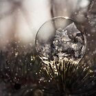 Magic winter by JBlaminsky