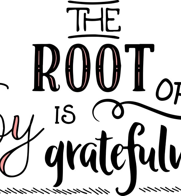 The Root of Joy Is Gratefulness by ouahibelhanchi