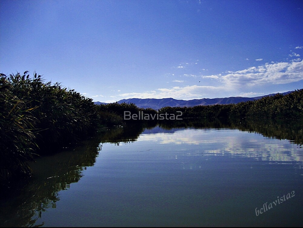 The River To NoWhere by Bellavista2