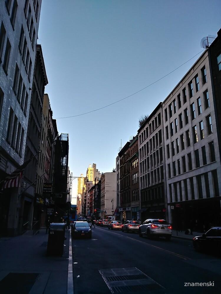 Metropolitan area, New York, Manhattan, Brooklyn, New York City, architecture, street, building, tree, car, pedestrians, day, night, nightlight, house, condominium,  by znamenski