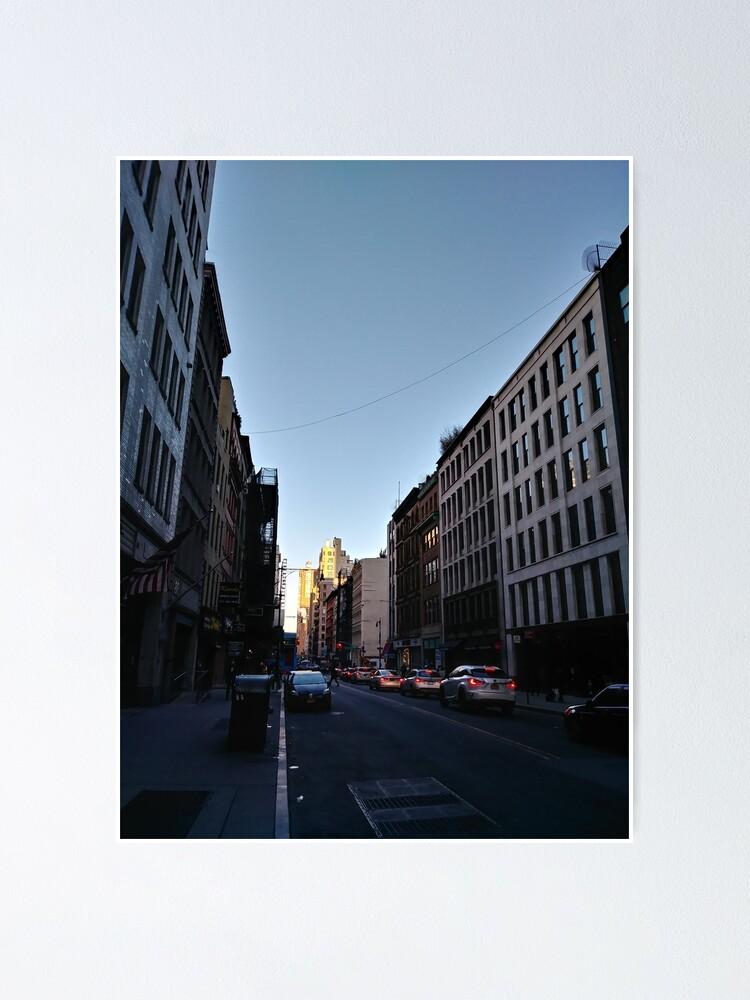 Alternate view of Metropolitan area, New York, Manhattan, Brooklyn, New York City, architecture, street, building, tree, car, pedestrians, day, night, nightlight, house, condominium,  Poster
