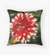 Creation of God, The Almighty Throw Pillow