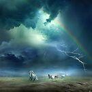 Rainbow Storm by Igor Zenin