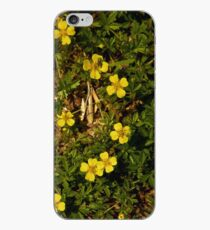 Tormentil in Shalwy Valley iPhone Case