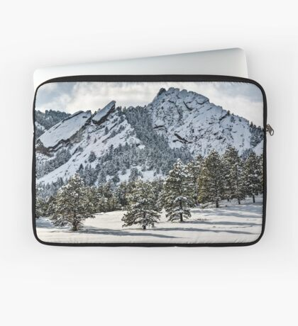The Might Flations From Bluebell Road Laptop Sleeve