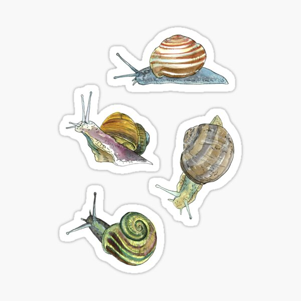 Slippery Snails 2 Sticker