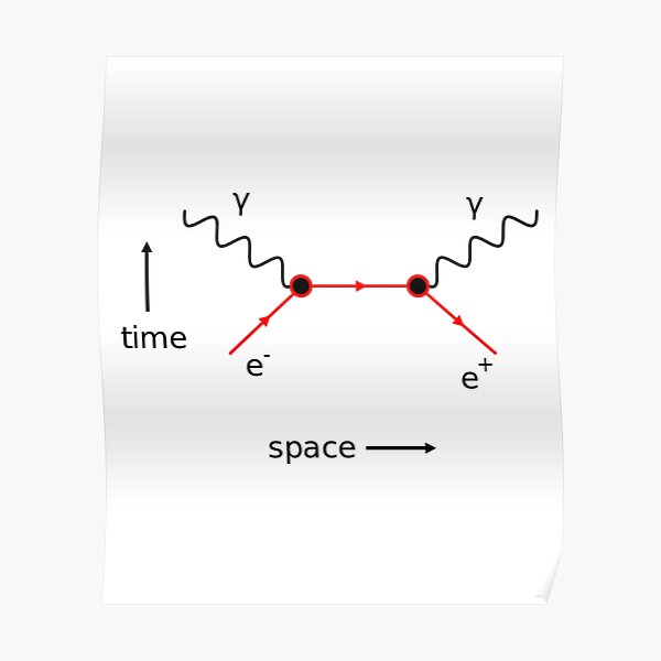 Feynman Diagram Physics Poster