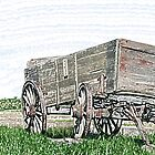 Abandoned Wooden Wagon in a Field by rhamm