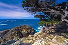 Big Sur Point Lobos State Park, Point Lobos by photosbyflood