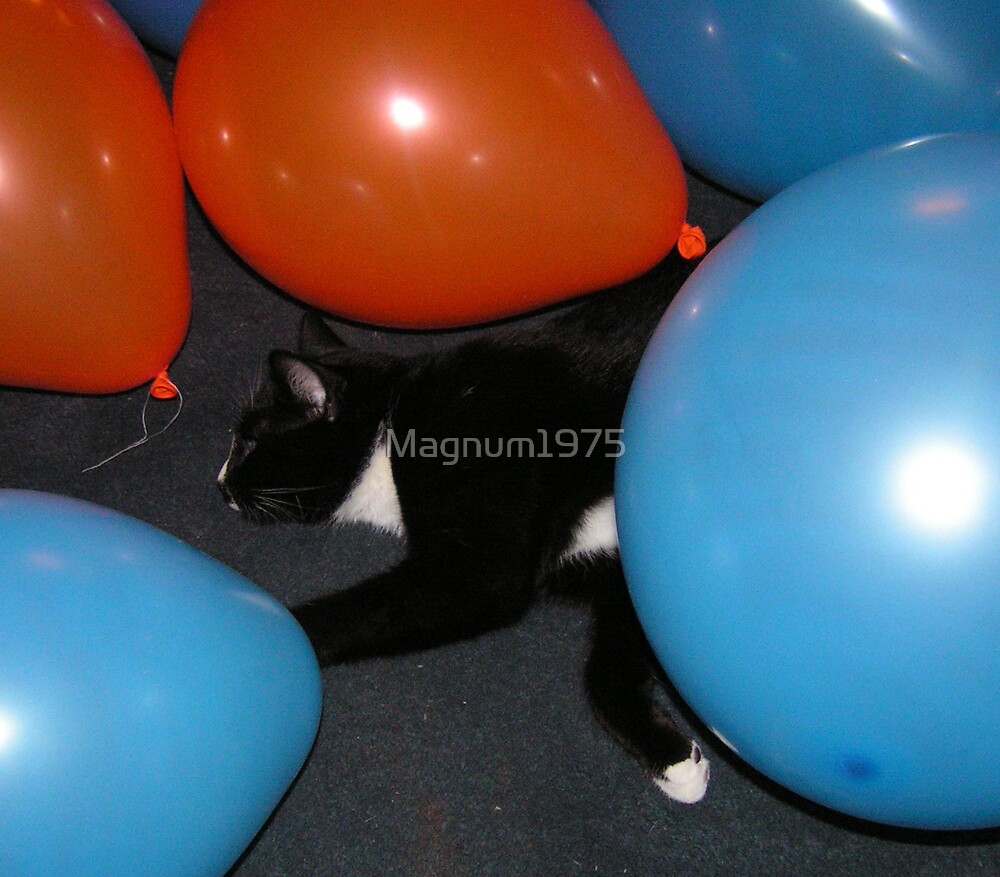 Bump and the Balloons by Magnum1975