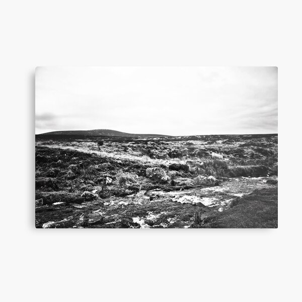 Wicklow National Park Metal Print