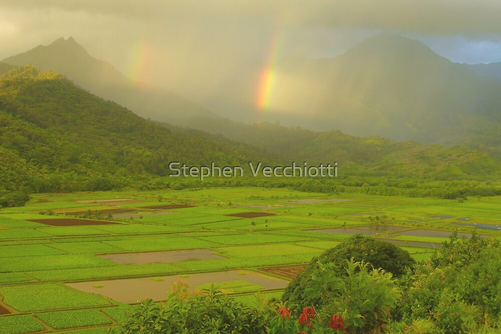 Double Rainbows, Hanalei Valley by Stephen Vecchiotti
